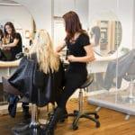 Protective Shield for hair salon
