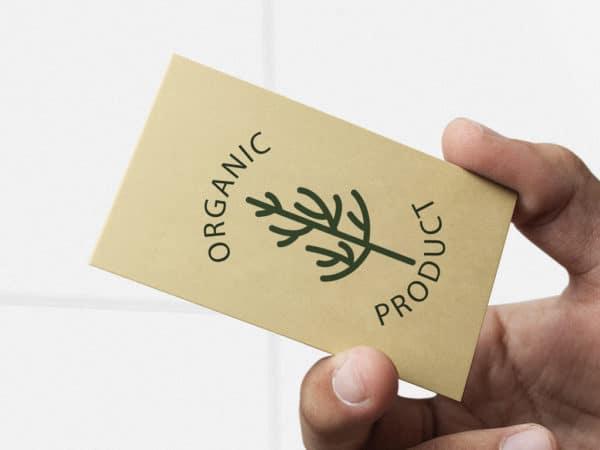 eco business cards